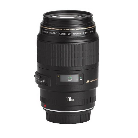 Canon EF 100mm f 2.8L vs EF 100mm f 2.8 Macro Lens
